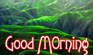 Very Nice Good Morning HD Images photo for friend