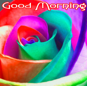 Very Nice Good Morning HD Images pics download