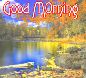 Very Nice Good Morning HD Images wallpaper photo ffriend