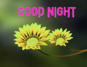 Good Night Images picture photo pics for girlfriend