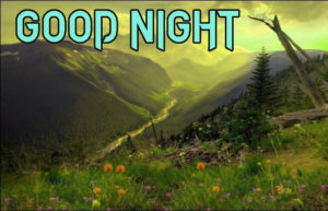 Good Night Images wallpaper picture for best friend
