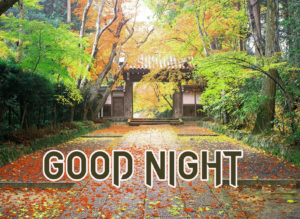 Good Night Images picture photo for best friend