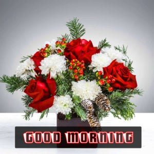 Good Morning Images for Whatsapp / Facebook