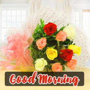 Good Morning Images Wallpaper With Rose