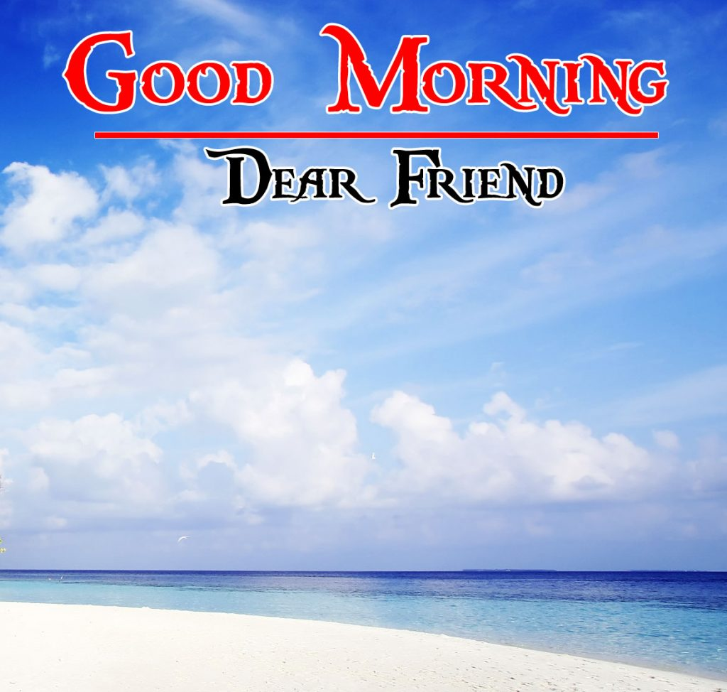 Best friends HD Nature Free Good Morning Images wallpaper