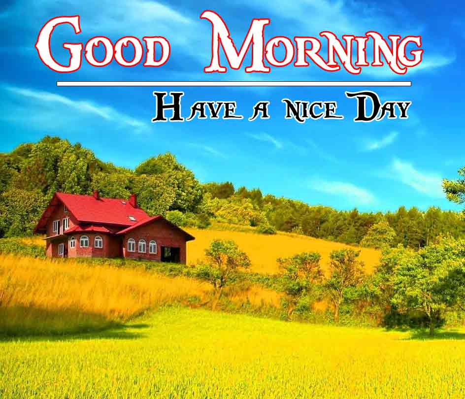 HD Nature Free Good Morning Images pics wallpaper