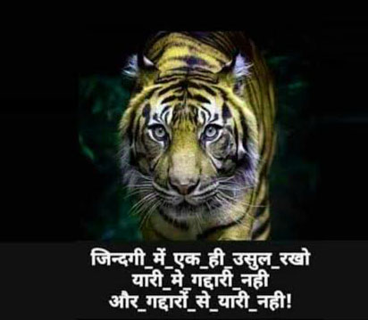 Hindi Attitude Whatsapp Images Photo Download
