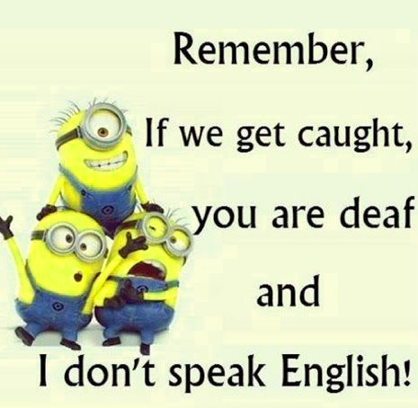 English Funny Images Wallpaper Pics Download