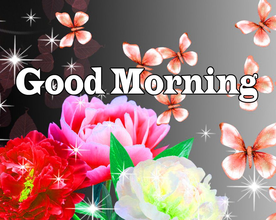 Flower Good Morning Wishes Wallpaper Pics Download