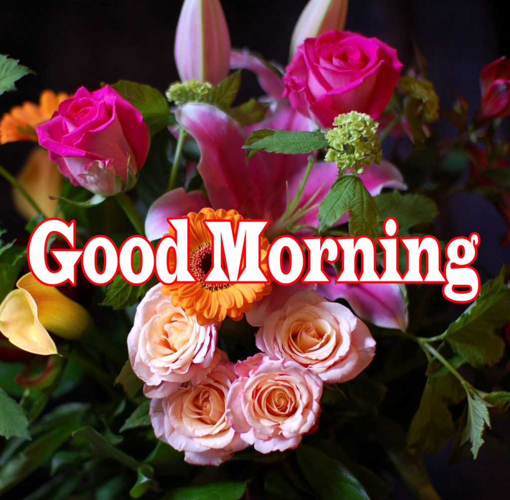 Flower Good Morning Wishes Images Photo HD Download