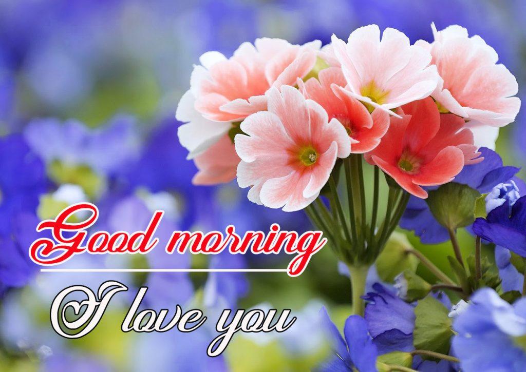 Flowers Good Morning Wallpaper Pics Wallpaper Download