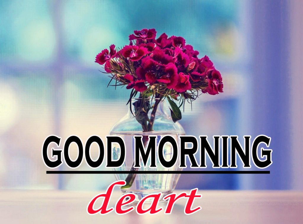 Flowers Good Morning Wallpaper Pics for Whatsapp