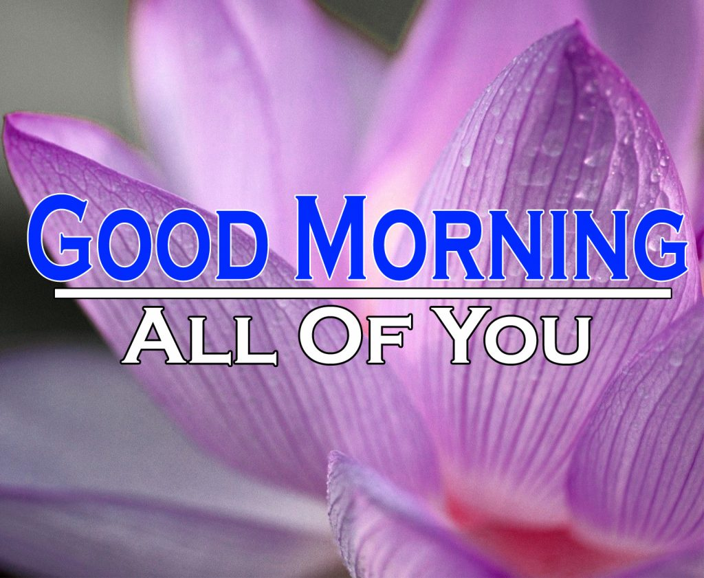 Beautiful Good Morning Wishes Images Photo Wallpaper