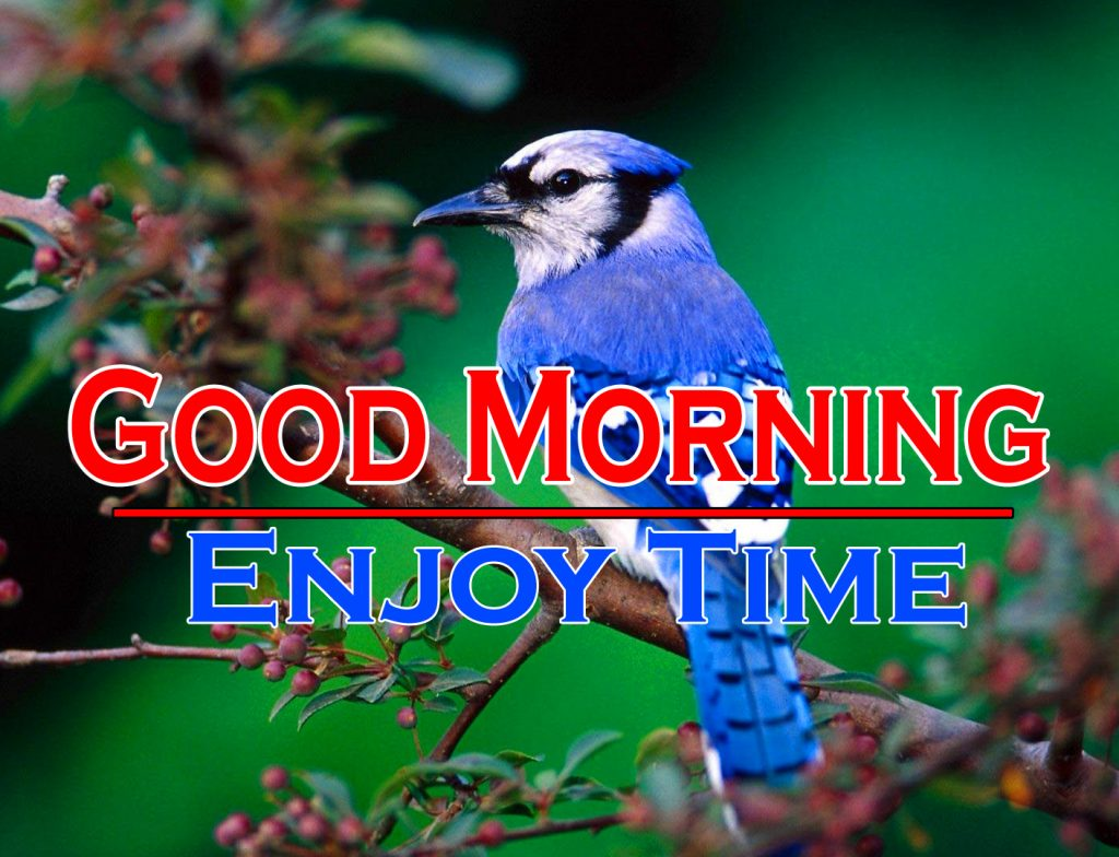 Beautiful Good Morning Wishes Images Photo Download