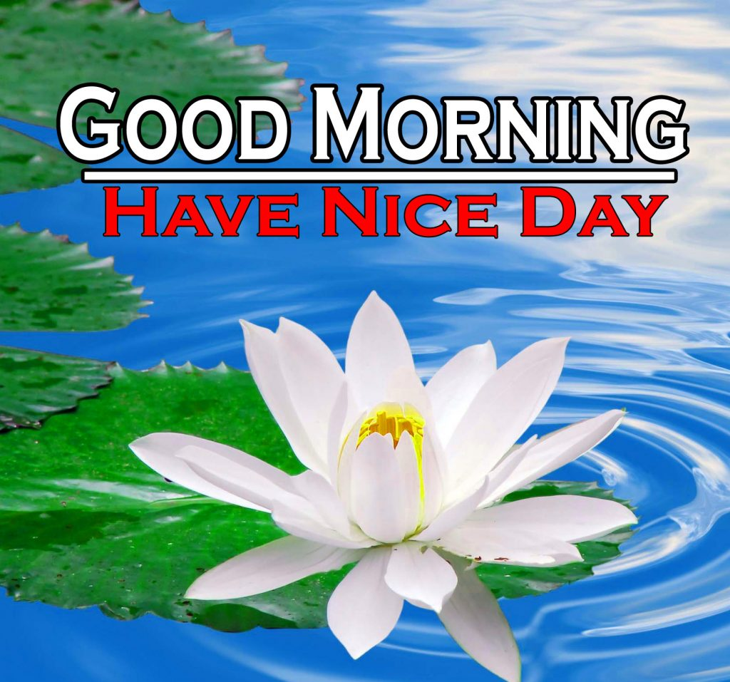Beautiful Good Morning Wishes Images Wallpaper Free