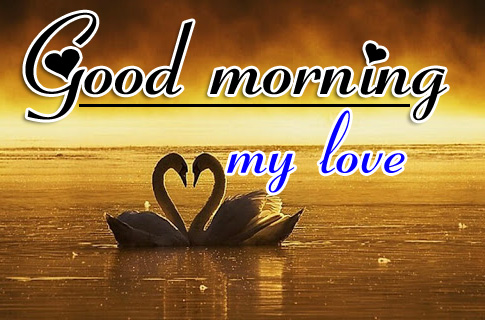 Good Morning HD Images Pics pictures Download