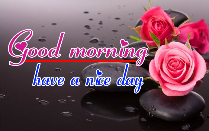 Good Morning HD Images Wallpaper for girlfriend