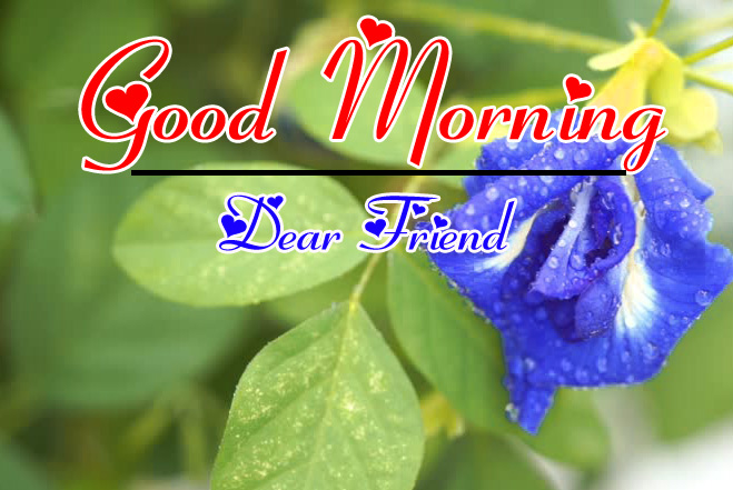 Good Morning HD Images Photo Download