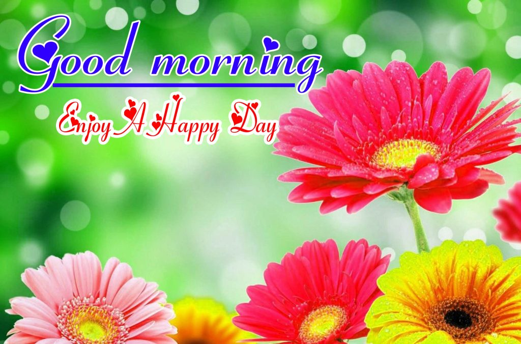 Good Morning HD Images Pics Wallpaper Download