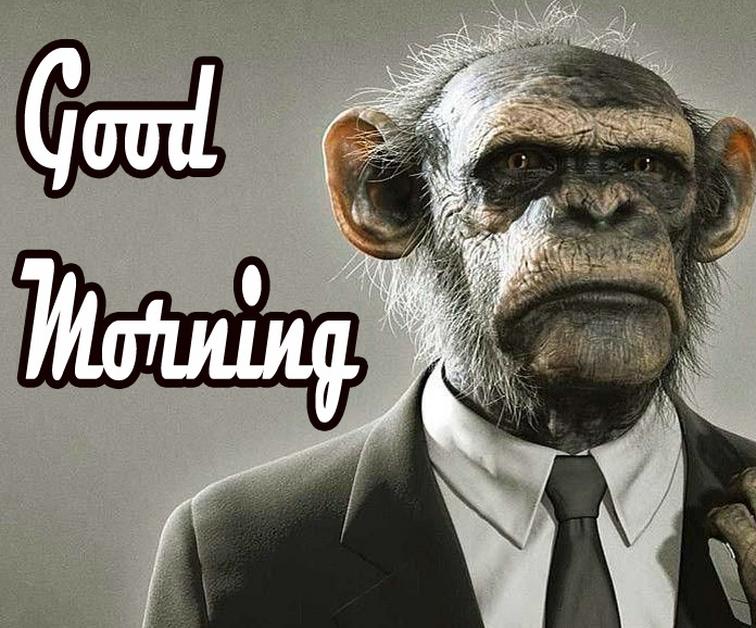 Funny Good Morning Images Pics photo Download