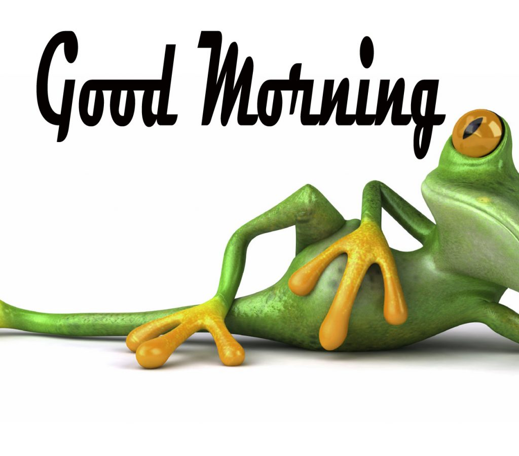 Funny Good Morning Images Wallpaper Pic Download