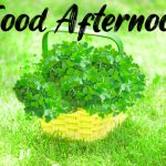 Good Afternoon Images Wallpaper Free Download
