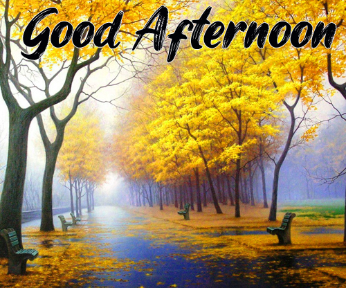 Good Afternoon Images Hd Free Download