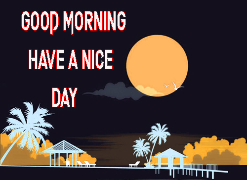 Good Morning Have A Nice Day Images Wallpaper HD Download
