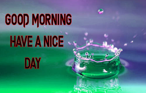 Good Morning Have A Nice Day Images Free Download