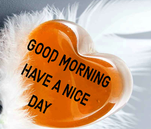 NewGood Morning Have A Nice Day Images Photo For Whatsapp