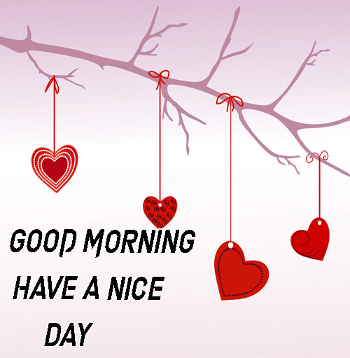 Good Morning Have A Nice Day Images Pics For Facebook