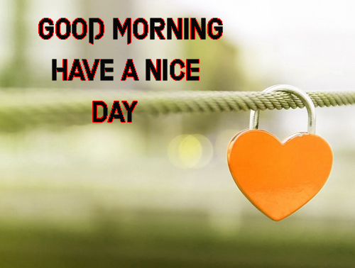 Good Morning Have A Nice Day Images Photo Free Download