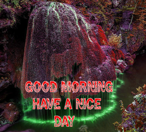 Good Morning Have A Nice Day Images Pics Free