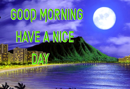 LatestGood Morning Have A Nice Day Images Wallpaper