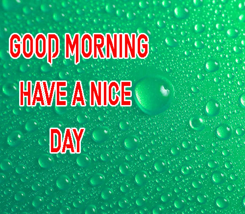 NewGood Morning Have A Nice Day Images Photo Free