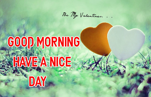 Good Morning Have A Nice Day Images Wallpaper
