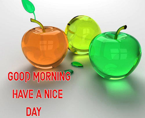LatestGood Morning Have A Nice Day Images Photo Free
