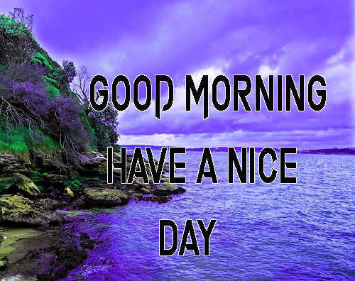 NewGood Morning Have A Nice Day Images Wallpaper