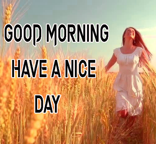 Pics FreeGood Morning Have A Nice Day Images