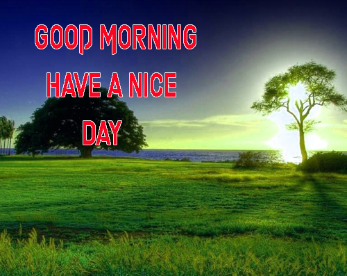 Good Morning Have A Nice Day Images Wallpaper photo