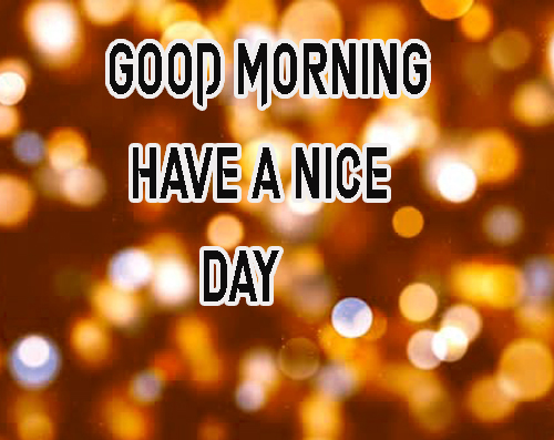 LatestGood Morning Have A Nice Day Images Download