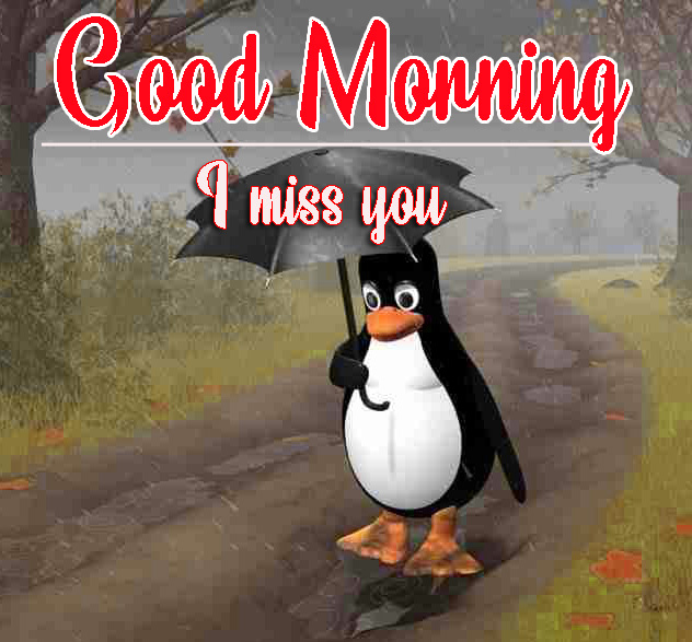 Good Morning Images HD