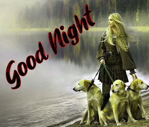 Good Night Images Pics For Friends