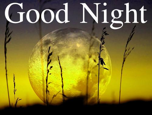 Good Night Wallpaper Images Wallpaper pics