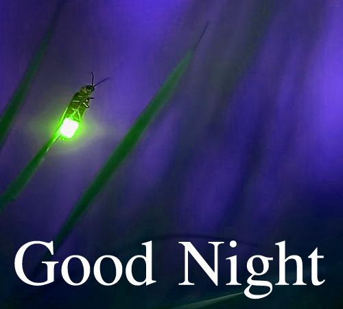 Best Good Night Wallpaper Pics Wallpaper Download