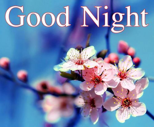 Good Night Wallpaper Images Pics Download