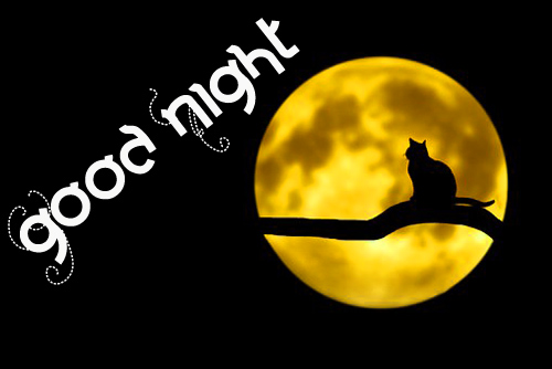 Best Good Night Wallpaper Photo for Facebook
