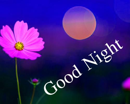 Good Night Wallpaper Images Wallpaper Free