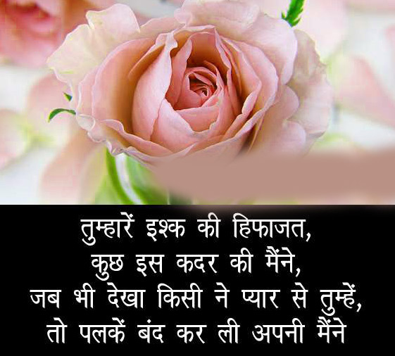 Flower Love Shayari Whatsapp Dp hd pics
