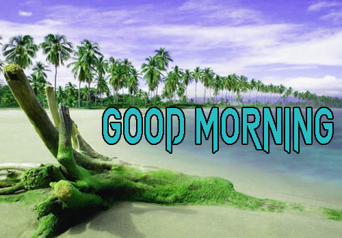 Free Good Morning Images Pics Wallpaper Download